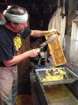 The cappings will be saved, strained of honey, then melted back down to make candles.