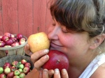 The aroma of gathered apples is intoxicating to Apprentice Kristin!